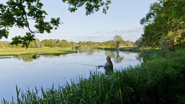kongensbro-lystfiskeri